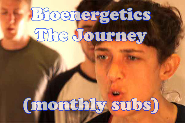 Bioenergetics – The Journey (monthly subs)