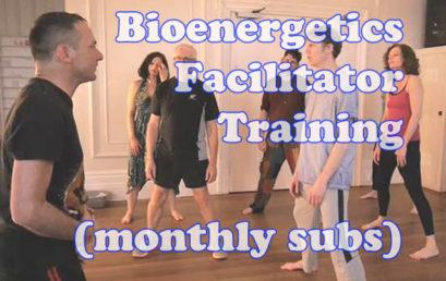 Bioenergetics Facilitator Training (monthly subs)