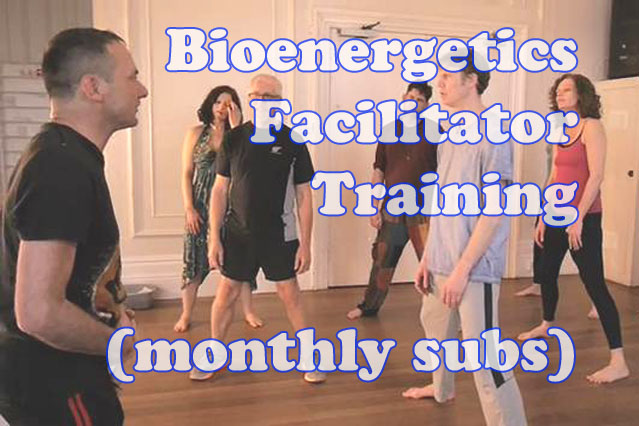 Bioenergetics Facilitator Training (monthly subs)