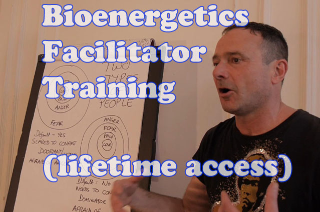 Bioenergetics Facilitator Training (lifetime access)